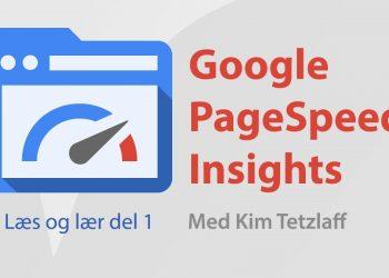 google pagespeed insights del 1 kim tetzlaff