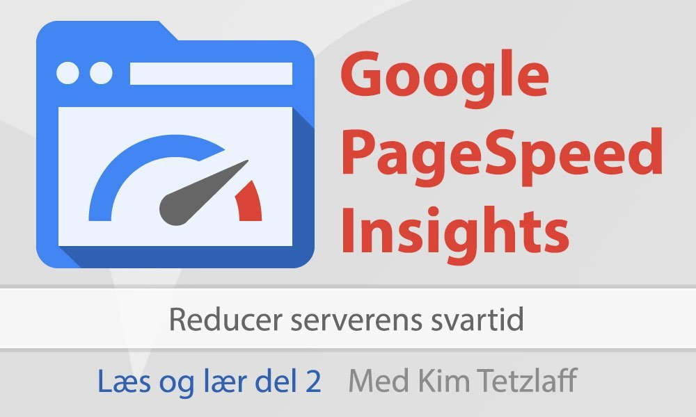 google pagespeed insights del 2 reducer serverens svartid